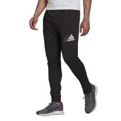 adidas Q3 BLUV SERE PT spodnie męskie